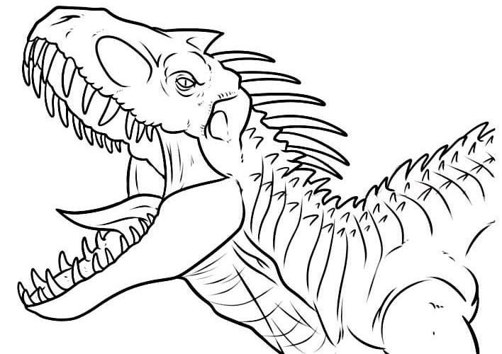 Coloriage Dinosaure Gratuit 15 Images A Imprimer En 1 Clic