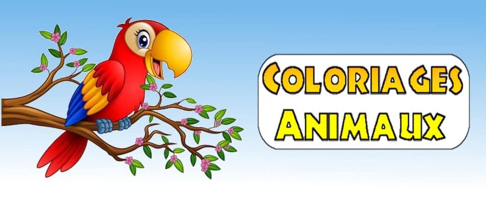 coloriage animaux à imprimer