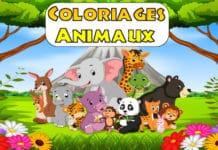coloriage animaux a imprimer