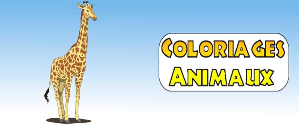 image animaux a imprimer