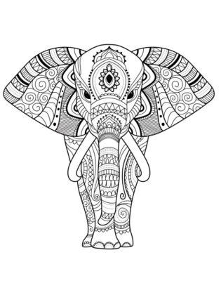 dessin elephant mandala