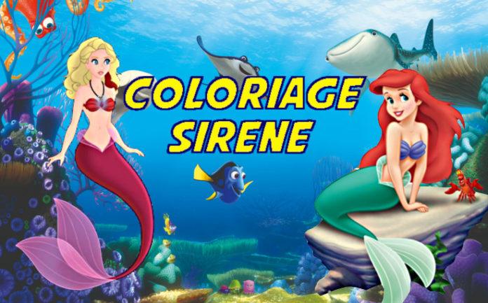 coloriage sirene
