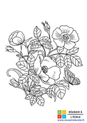dessin bouquet de fleurs