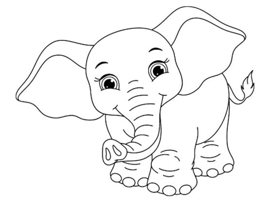dessin elephant