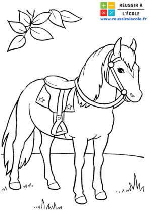 coloriage barbie cheval