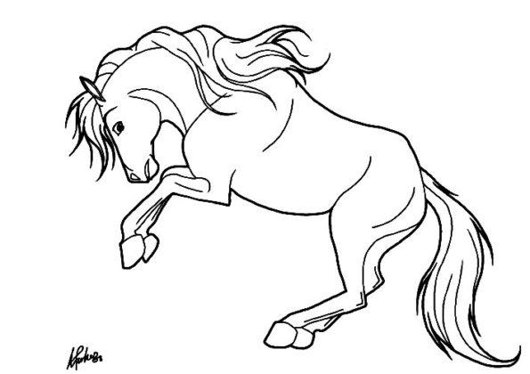 coloriage cheval qui saute