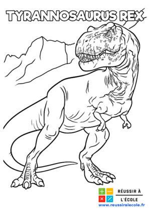 tyrannosaure dessin