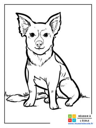 coloriage chien
