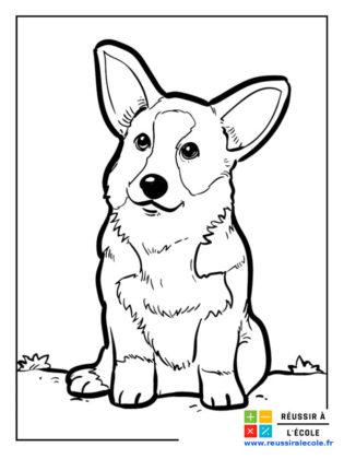 coloriages petits chiens