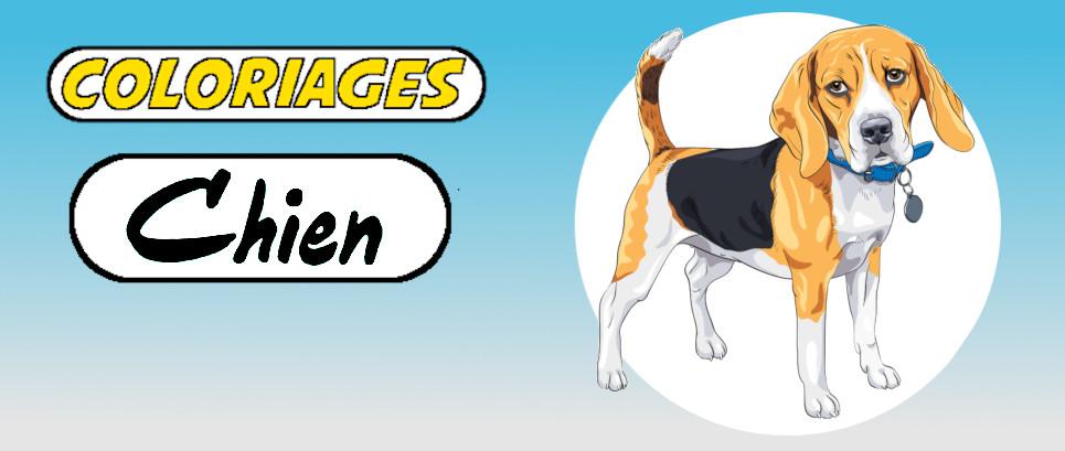 coloriages de chiens