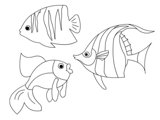 poissons à colorier