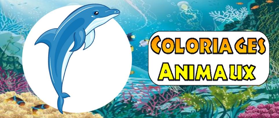 coloriage à imprimer animaux