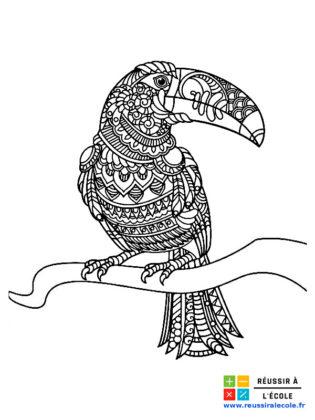 coloriage oiseau mandala